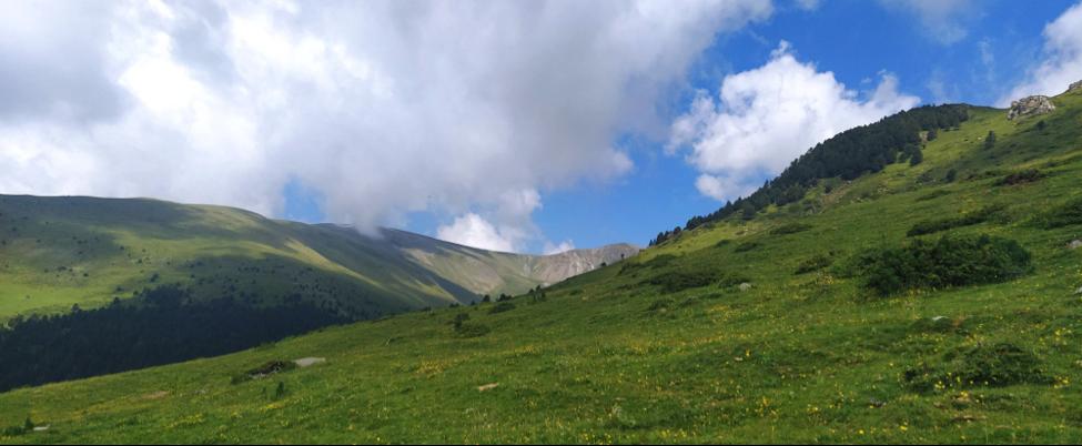 paisaje en el camino de la devoción